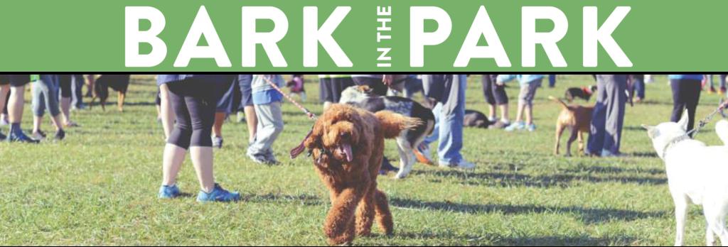 Providence Animal Center Bark in the park