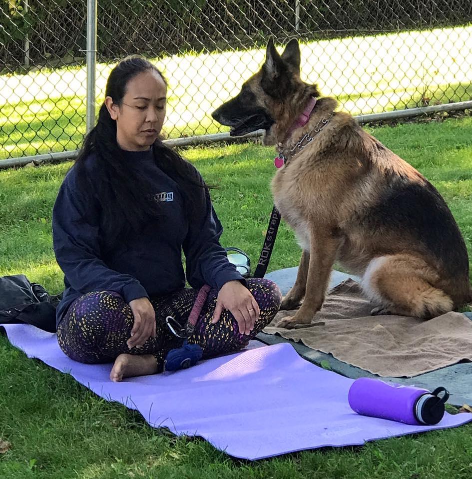 Providence Animal Center ADULT LARGE DOG PLAY ETIQUETTE