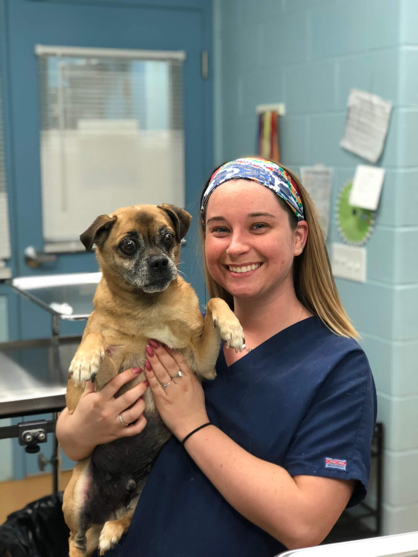 Providence Animal Center vet and dog