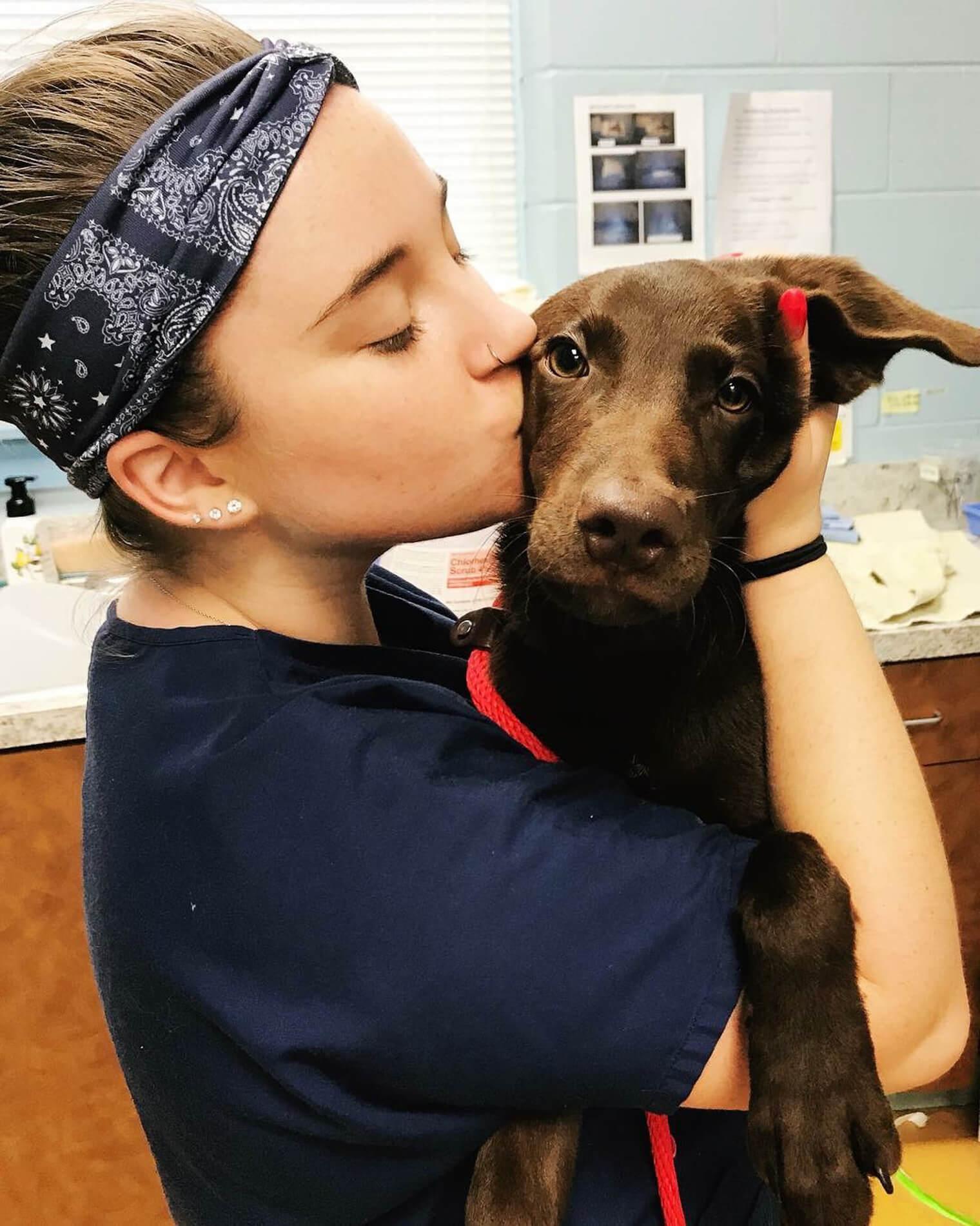 Providence Animal Center vet