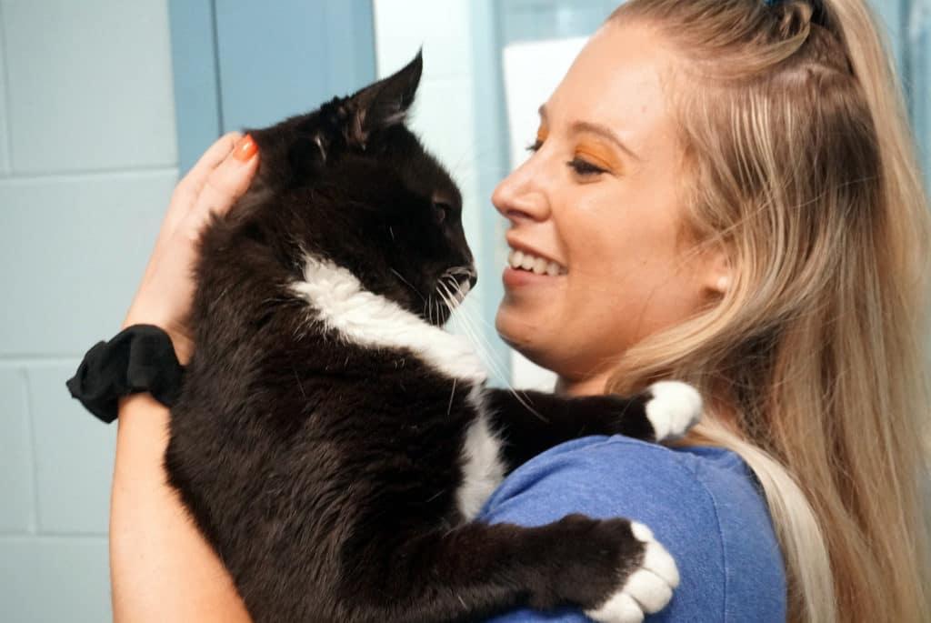Providence Animal Center | Adoption & Veternarian Services