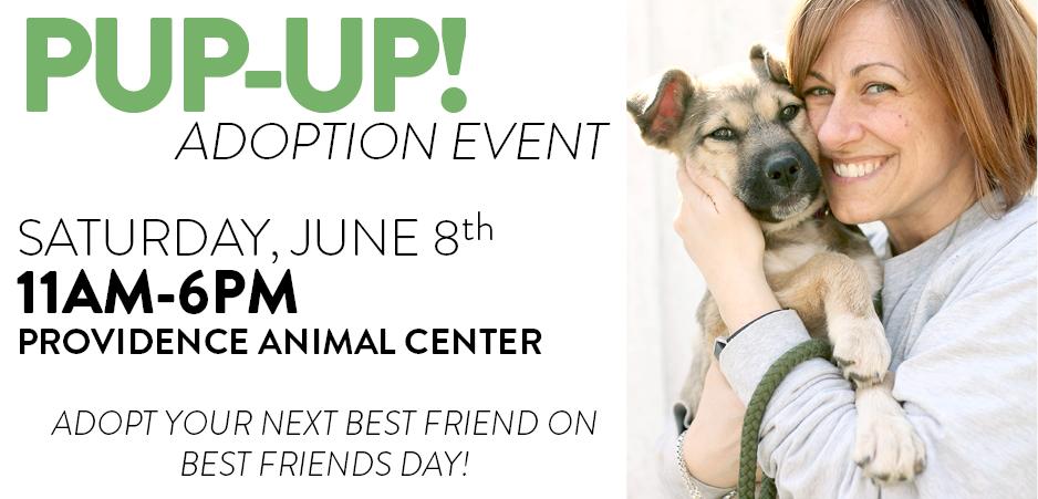 pupup adoption event