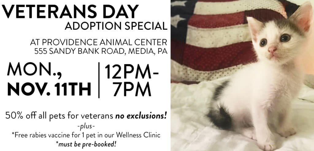 Veterans Day_event header