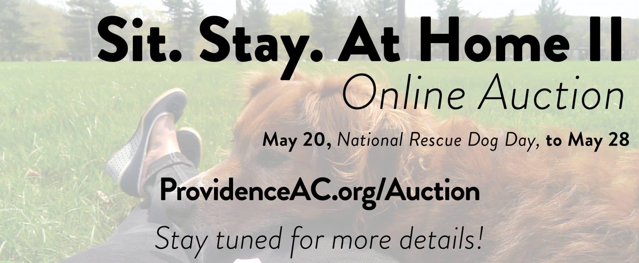 auction header4