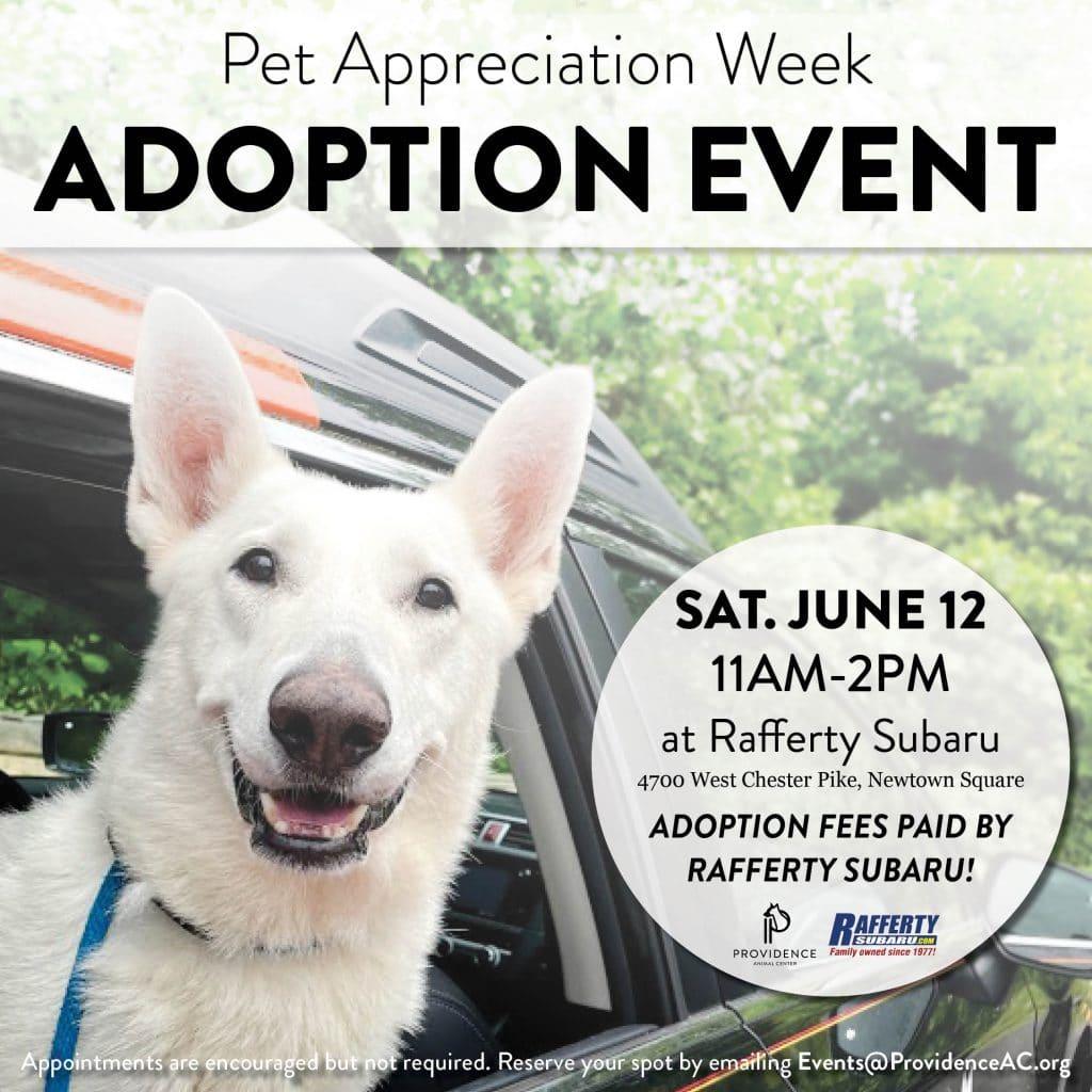 Rafferty Adoption Event1
