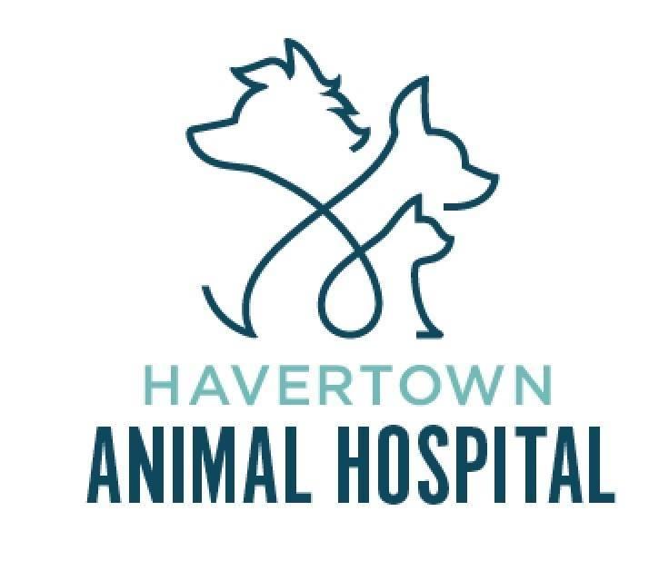 HavertownAnimalHospital